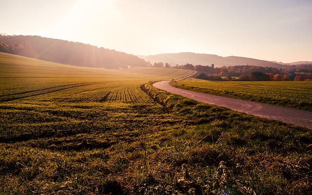 cara investasi tanah